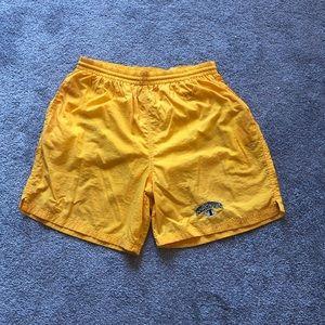 Champion Spellout Logo Swim Trunks Mesh Shorts